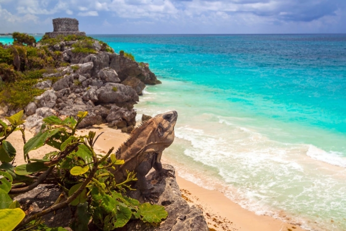 Lustrumreis Mexico! - Picture perfect Tulum