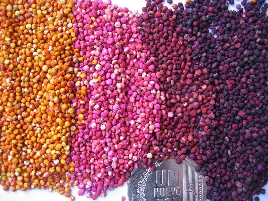 Lustrumreis Bolivia! - Food for foodies