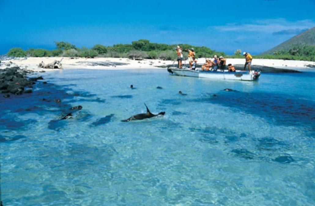Lustrumreis Ecuador! - Galapagos