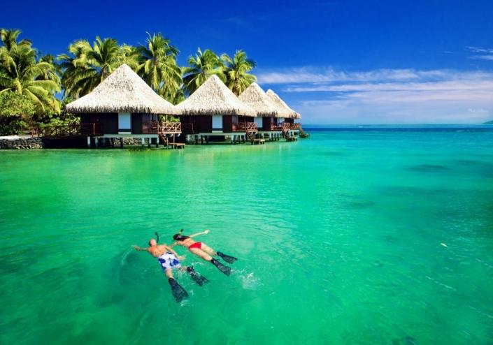 Lustrumreis Sri Lanka! - Manta's @ De Malediven