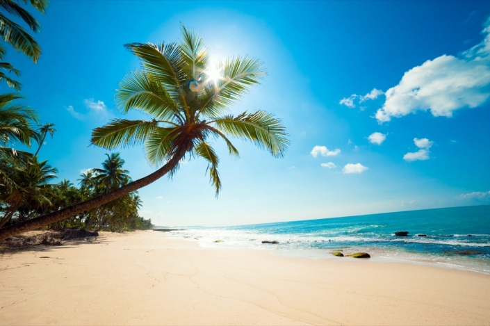Lustrumreis Sri Lanka! - Prototype Paradijs