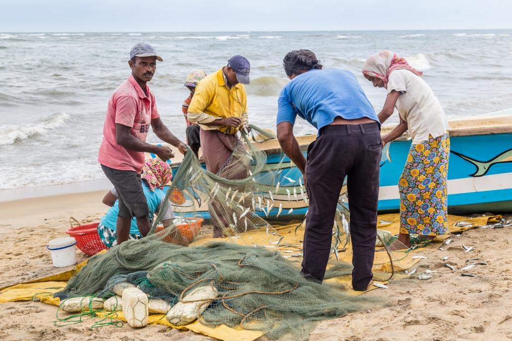 Lustrumreis Sri Lanka! - Zon, zee, zeilen: Negombo