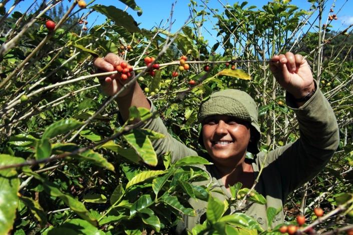 Lustrumreis naar Nicaragua - Café @ Matagalpa & Jinotega of Esteli