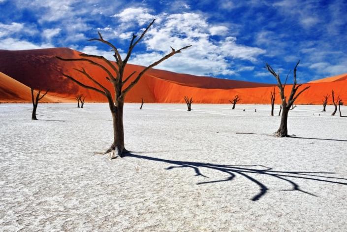 Lustrumreis Namibië - Deadvlei