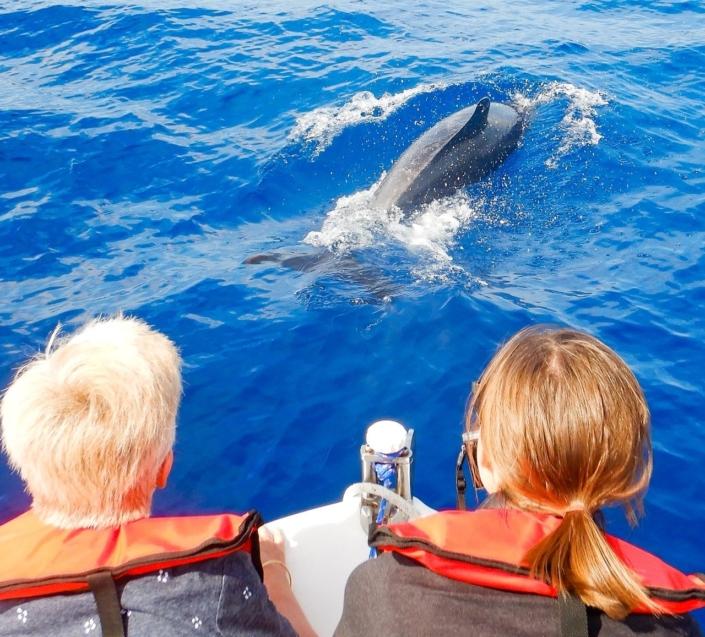 Lustrumreis Namibië - Dolphin Cruise @ Walvis Bay