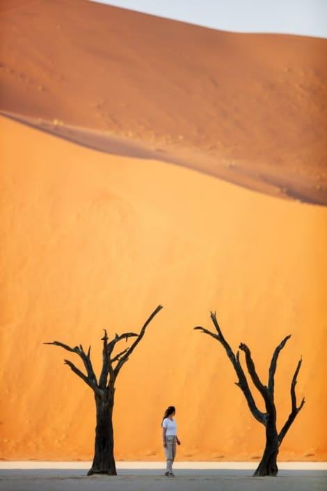 Lustrumreis Namibië - Sossusvlei