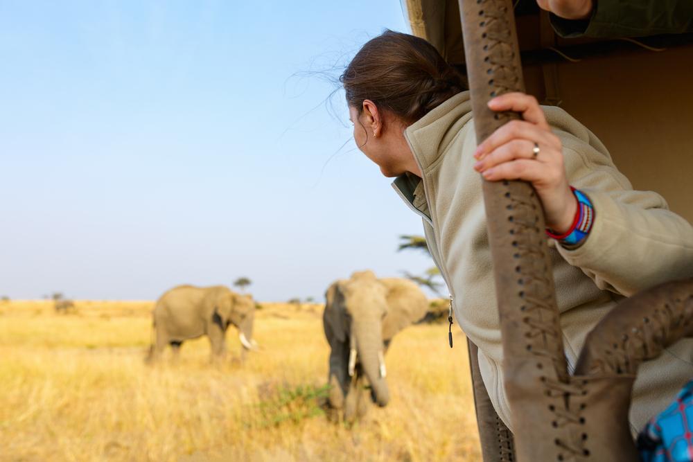 Tarangire National Park Olifant Heaven - Lustrumreis Tanzania & Zanzibar!