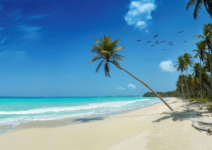 Tropische stranden @ buurlanden