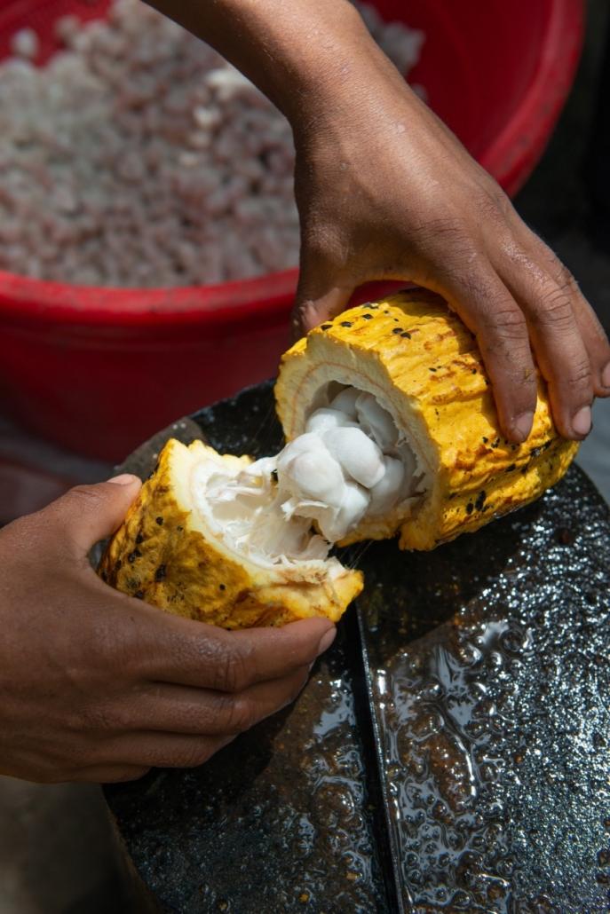 Lustrumreis Ecuador! - Er chocola van maken