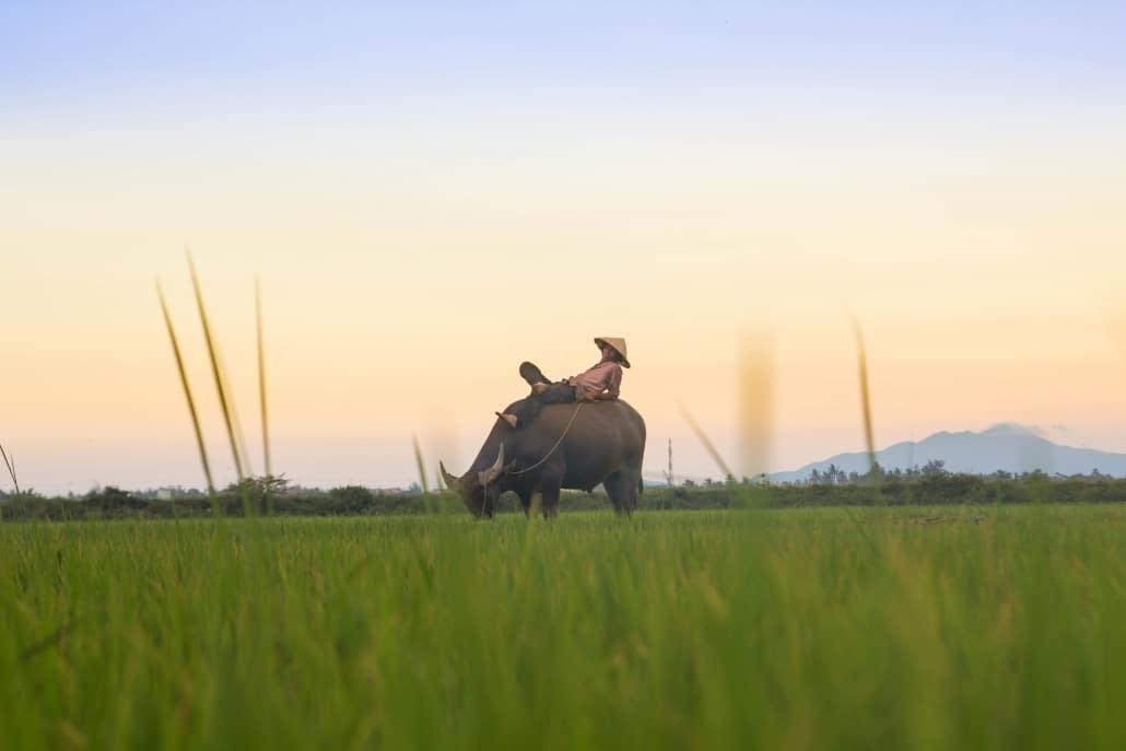 Lustrumreis Vietnam! - Overnachten bij de boeren thuis