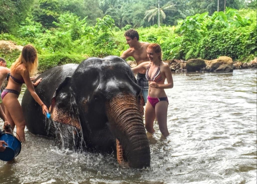 Lustrumreis naar Thailand - Olifanten sanctuary