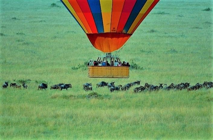 Lustrumreis naar Zuid-Afrika! - Cooler dan Kruger wordt het niet