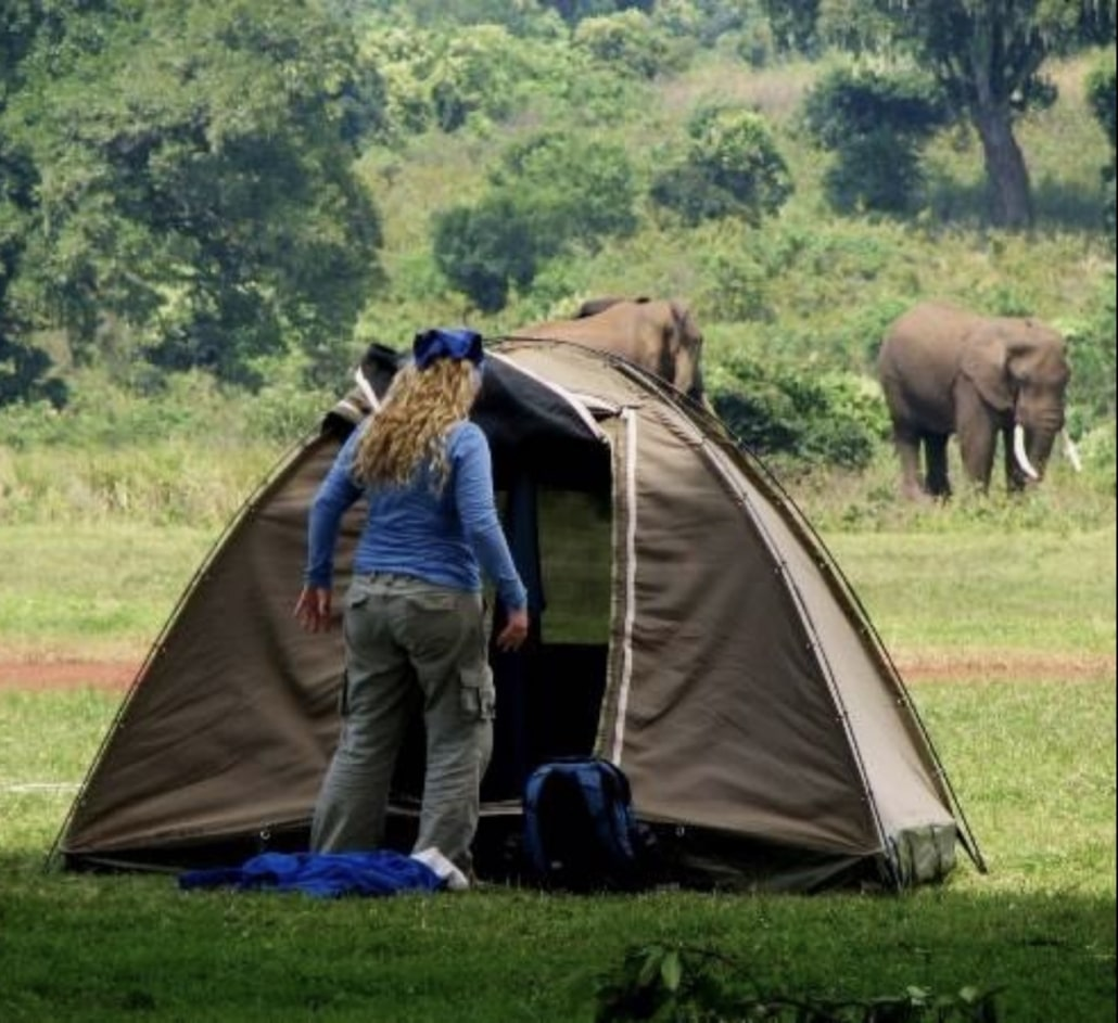 Lustrumreis naar Swaziland (Eswatini)! - Malalotja Nature Reserve (SWA)