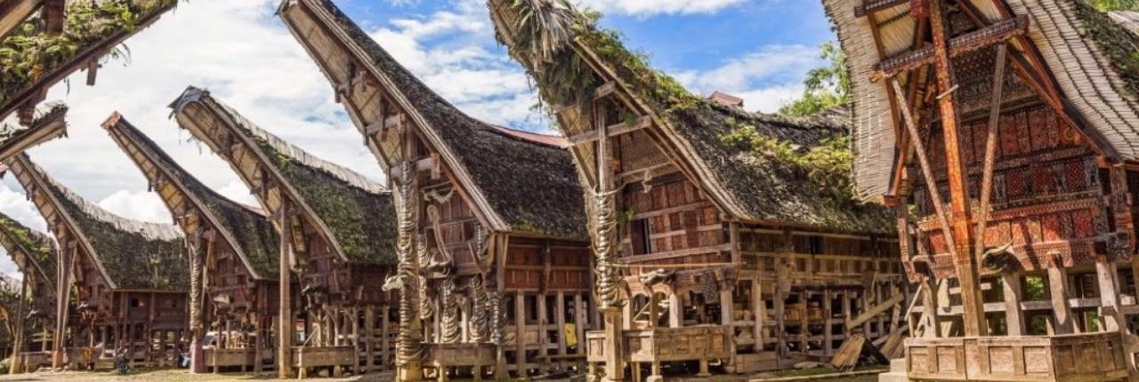 Lustrumreis Sulawesi 1
