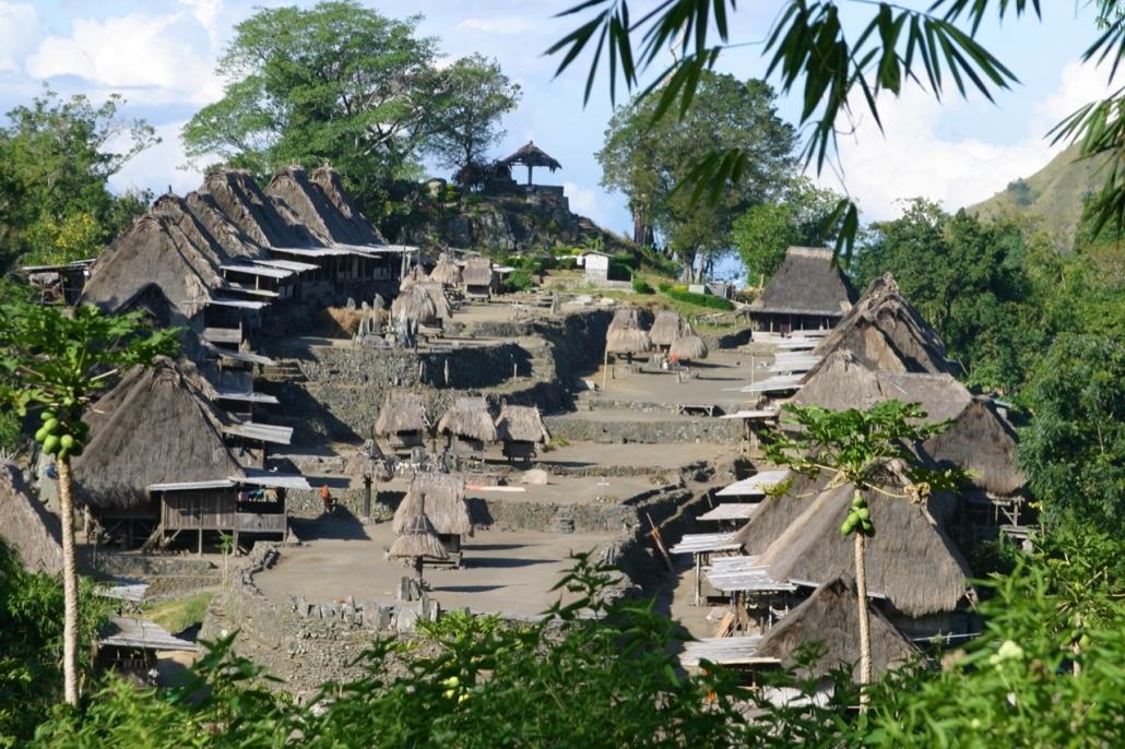 Lustrumreis Komodo & Flores in Indonesie! - Rituelen @ Bajawa Ngada (Flores)