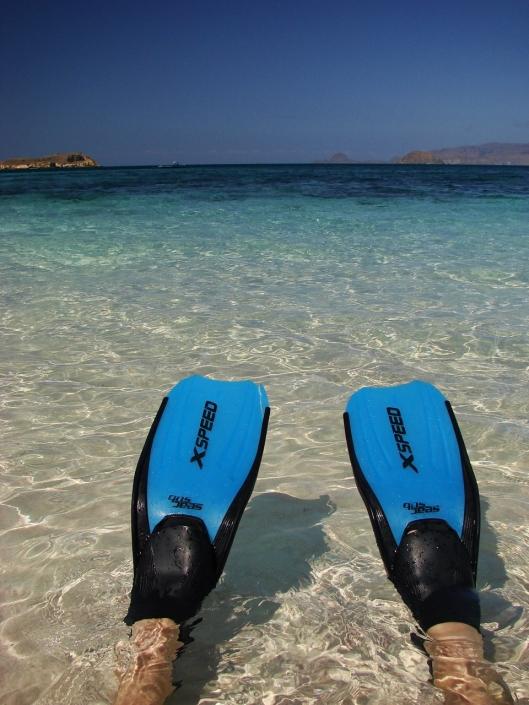 Lustrumreis Komodo & Flores in Indonesie! - Snorkelen @ Hagelwitte en chocoladebruine stranden (Flores & Pemana)